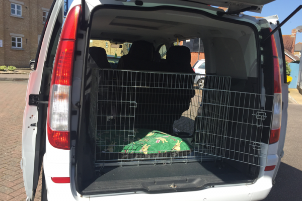 Spain Pet Transport